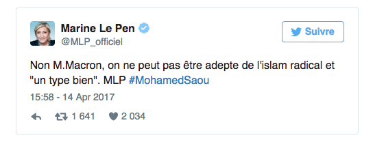 Marine-Le-Pen-JewPop